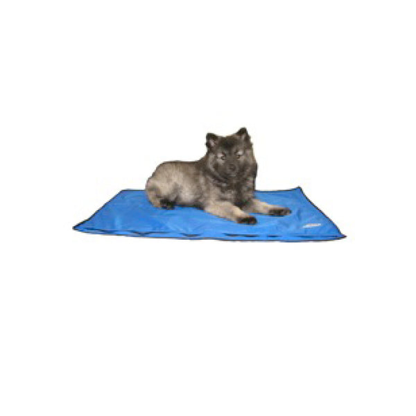DryKewl cooling dog pad for dogs