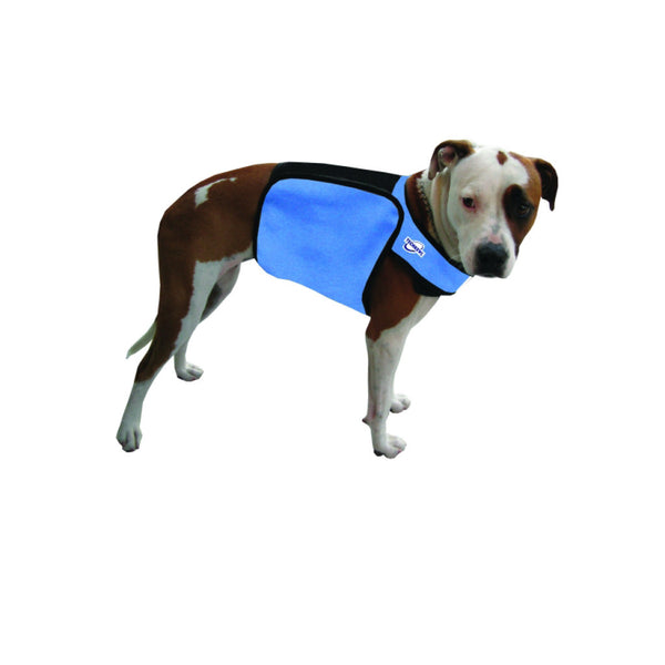 TECHKEWL™  Phase Change Cooling Dog Coat - blue