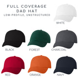 Illinois Hat - Classic Dad Hat - Many Color Combinations
