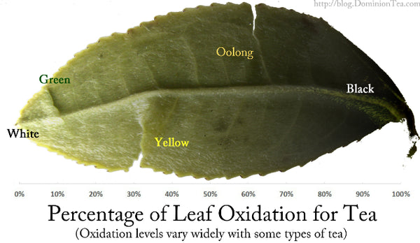 Oxidation Tea Leaves