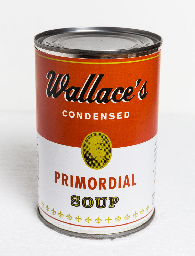 Wallace's Primordial Soup