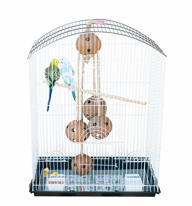Pet Magasin Interactive Natural Coconut Bird Toys