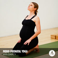 VIDEO DOWNLOAD: Modo Yoga Prenatal Class