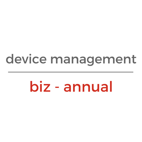 Chrome Device Management License - BIZ (Annual)