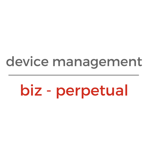 Chrome Device Management License - BIZ (Perpetual)