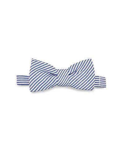 Tasty Ties Blue Striped Baby Bow Tie