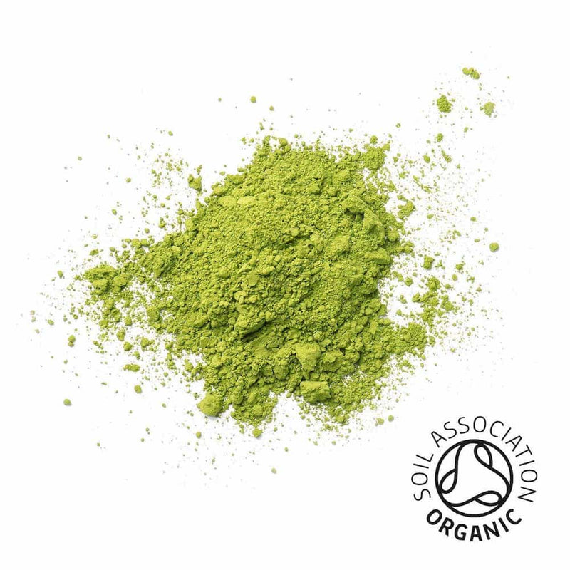 organic Japanese matcha powder gift tin