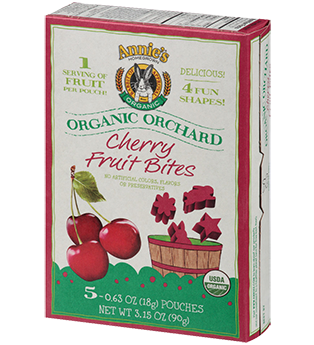 Annie's Homegrown Organic Orchard Fruit Bites Cherry -- 5 Pouches