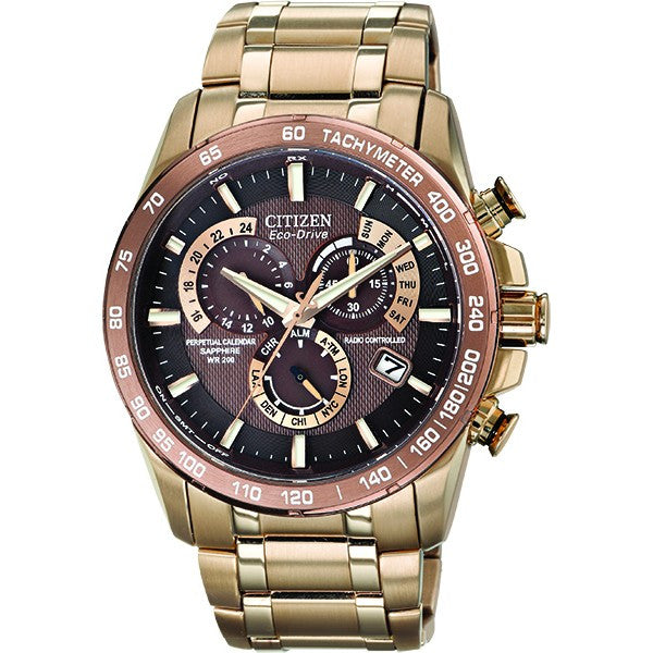 Citizen Men's Perpetual Watch