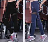 Mesh Yoag Navy/Black Leggings