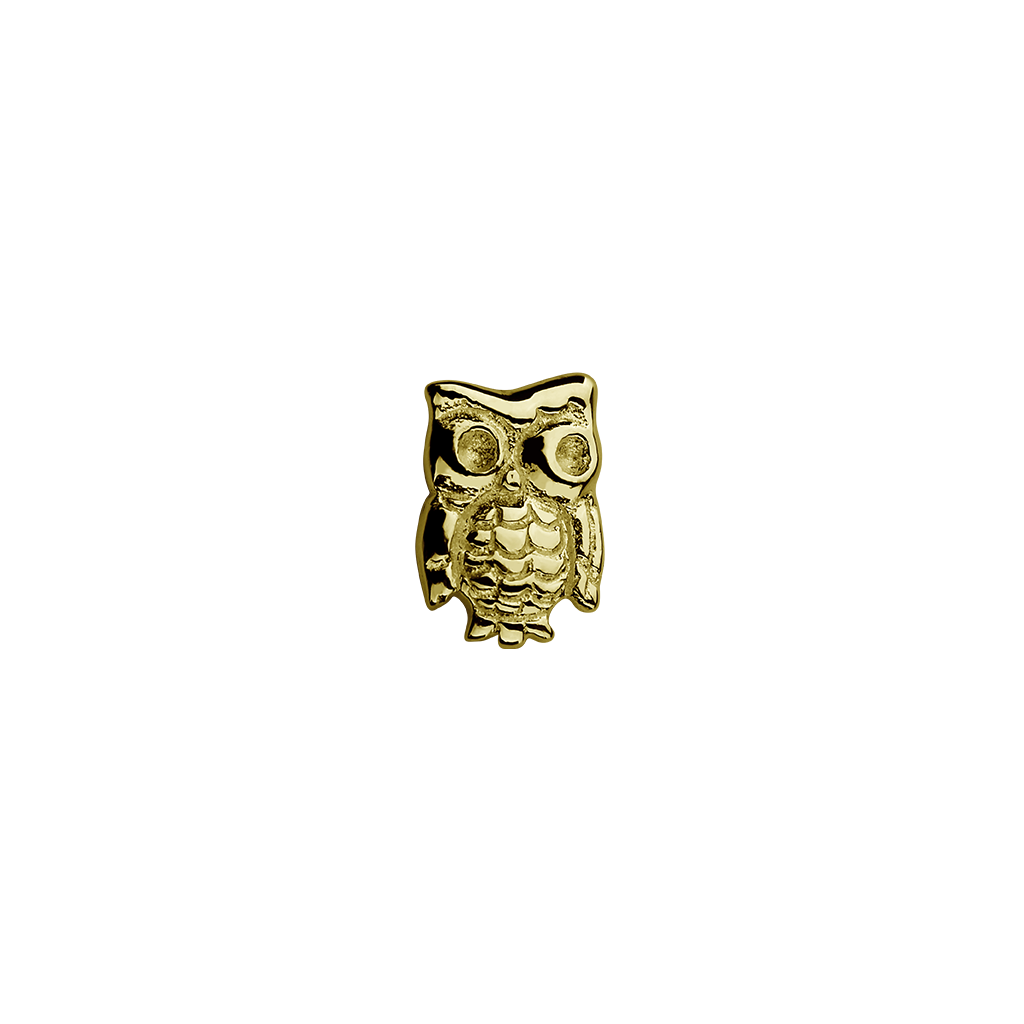 Gold Owl - Wise One charm