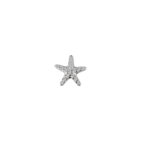 Starfish - Treasured