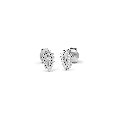 NZ Fern Stow silver stud earrings