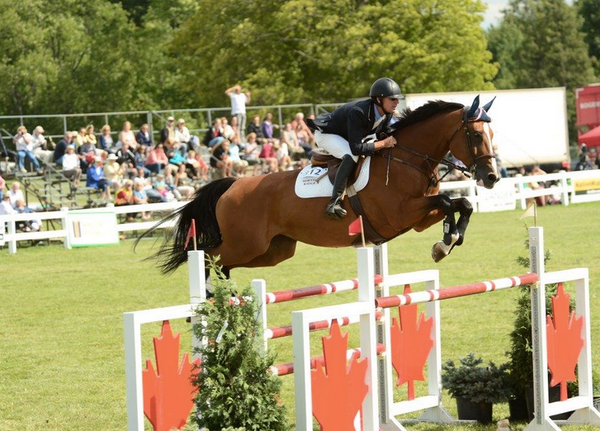 orangeville horse jumping tournament tickets