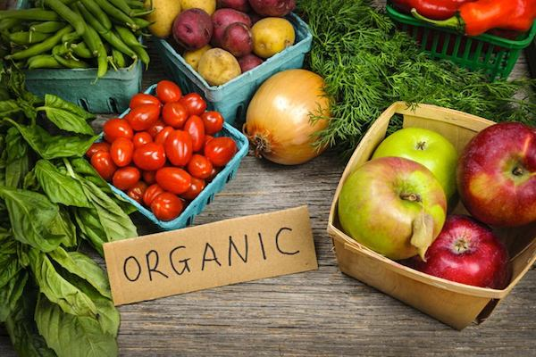 organic delivery toronto mama earth