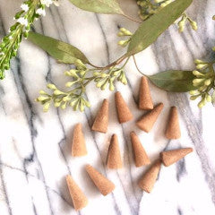 Gold Apothecary Neroli Woods Incense Cones