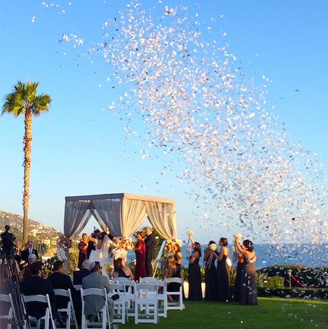 Custom Flashy Confetti Launch at Montage Laguna Beach, designed by Mindy Weiss Party Consultants.