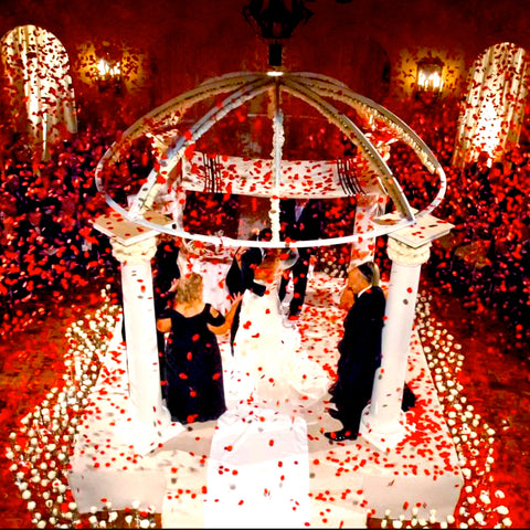 Red petal confetti wedding effect for Jowy Productions