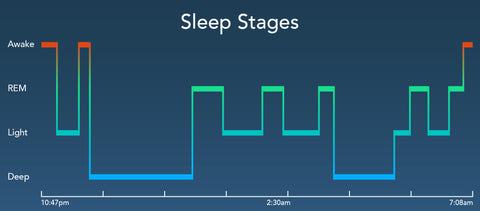 Sleep Stages Chart