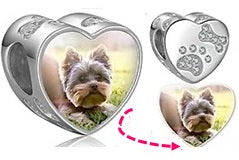 CAS101980 - 925 Sterling Silver Personalized Photo Charm