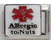 E-140 - Medical Alert, Allergic to Nuts, Stainless Steel Italian Charm