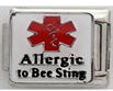 E-137 - Medical Alert - Allergic to Bee Sting, Stainless Steel Italian Charm