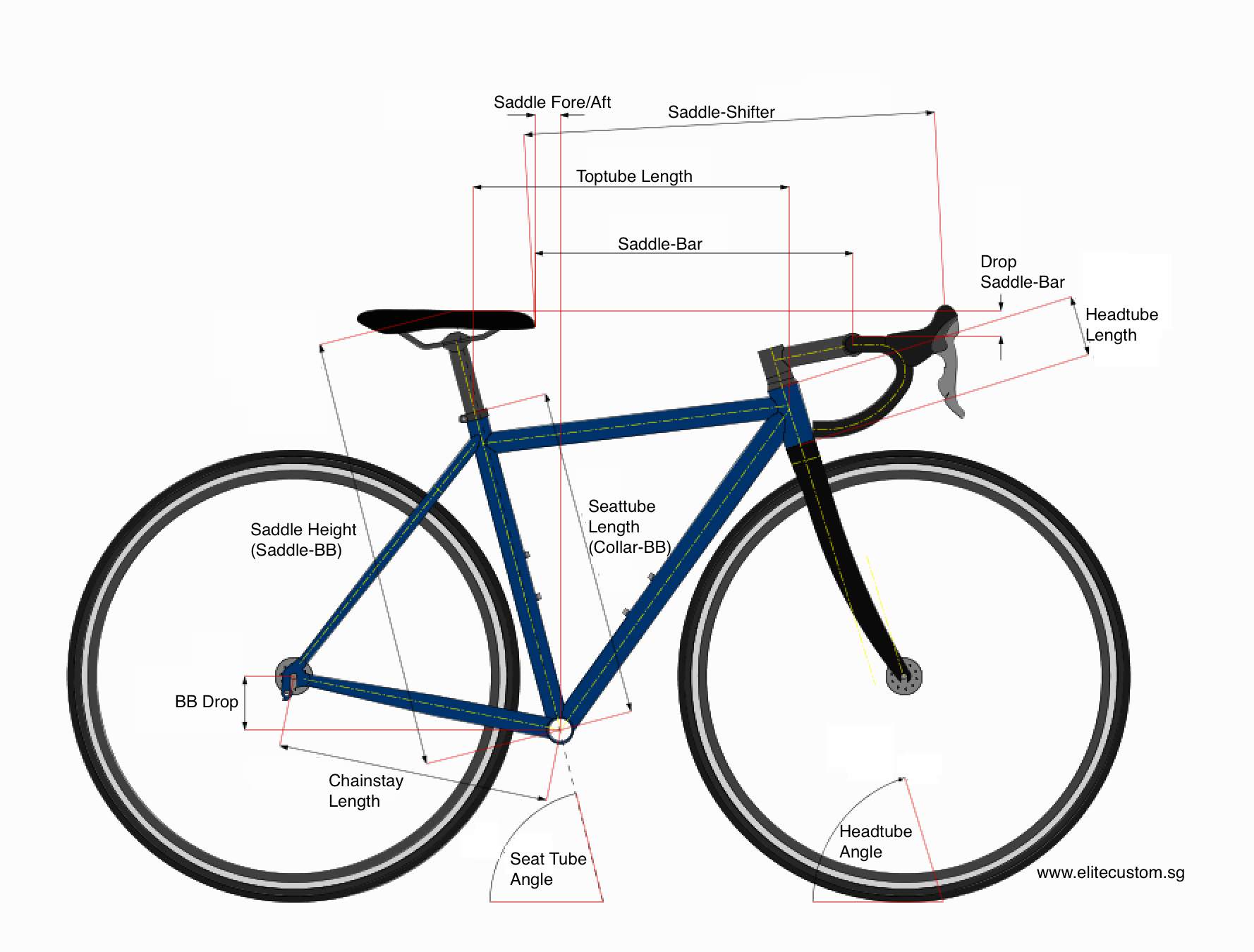 Elite Bicycle Fit Diagram