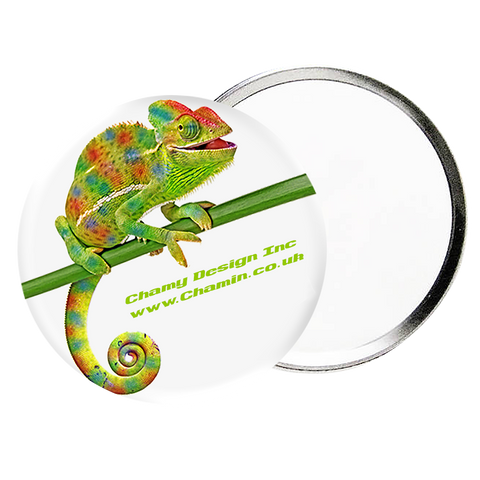 - Pocket Mirrors - Unprinted sample  - PG Promotional Items