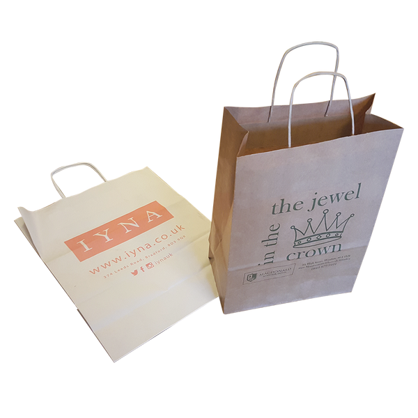 "10"" x 12"" Twist Paper Bags - Unprinted sample"