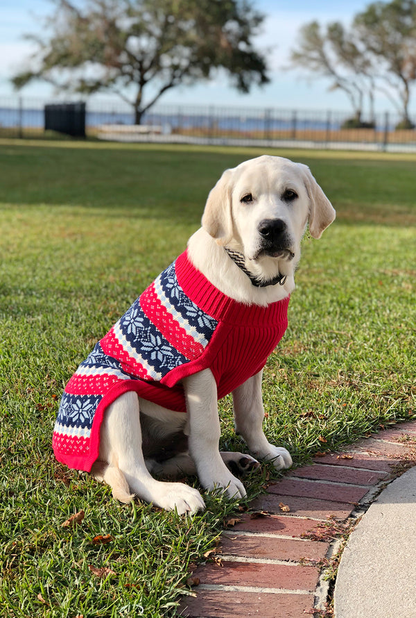 Fair Isle Dog Sweater in Red