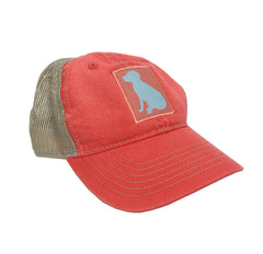 Lab Trucker Hat
