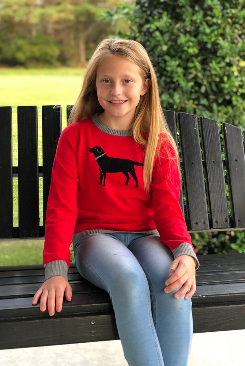 Kid's Icon Sweater in Black Labrador on Red
