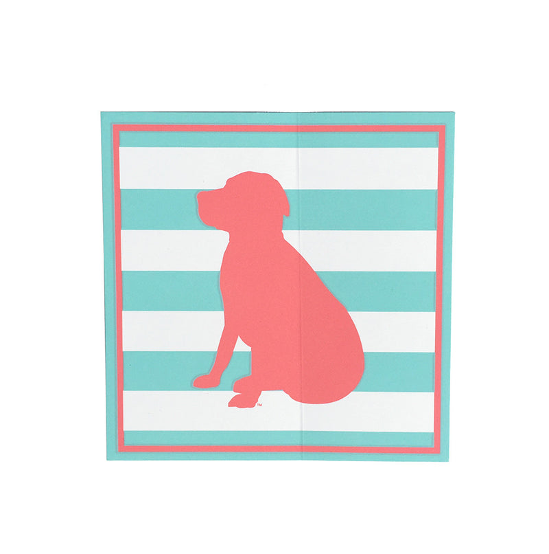 Striped Lab Sticker in Aqua/Coral
