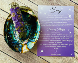 Abalone Shell & Sage Bundle