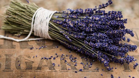 everything_soulful_lavender