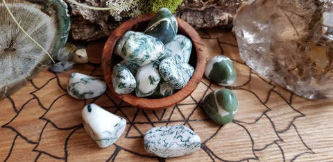everything_soulful_tree_agate
