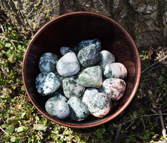 Mother Earth Connection: Tree Agate