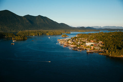 LOOKING SE OVER TOFINO