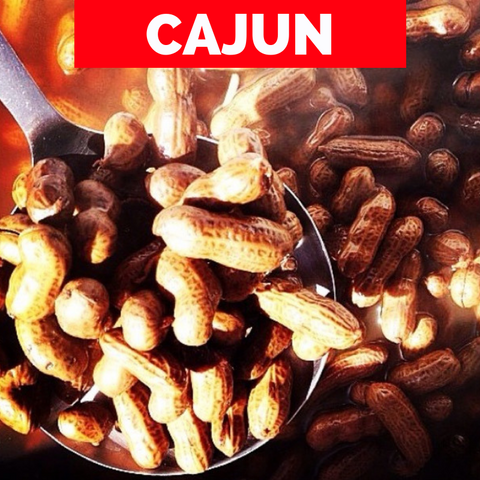 4 Pounds of Cajun PeanutDude.com Boiled Peanuts. Only $5.49 per Pound! - PeanutDude.com