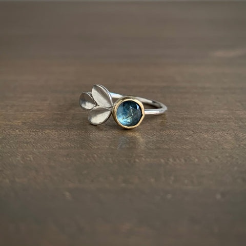 Katie Carder Montana Sapphire Fern Ring