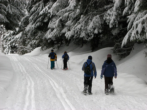 A group of people snow shoeing out in the snow in winter
