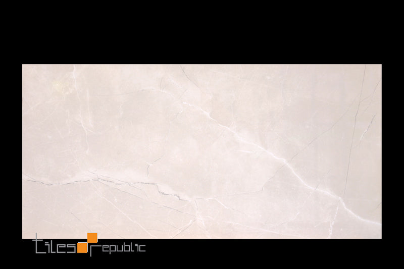 Fossil Bone Polished 300x600
