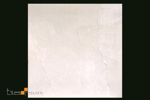 Fossil Bone Polished 600x600