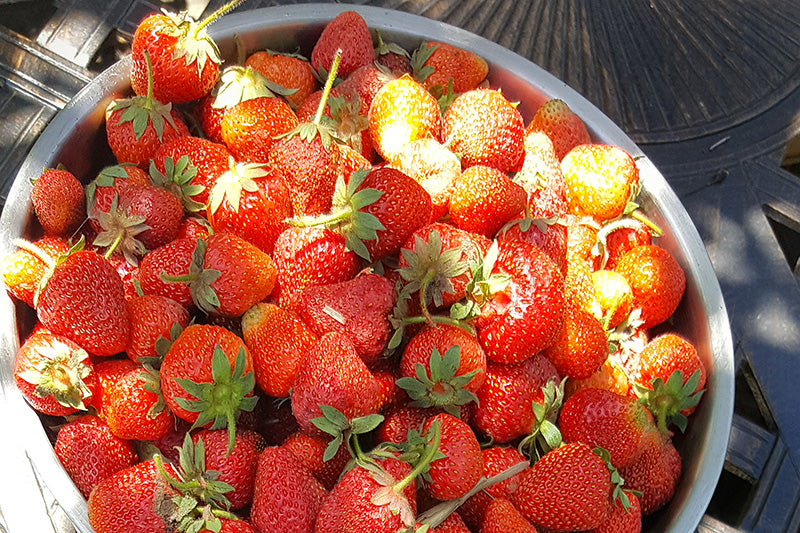 Strawberry benefits for skincare and handy DIY recipes