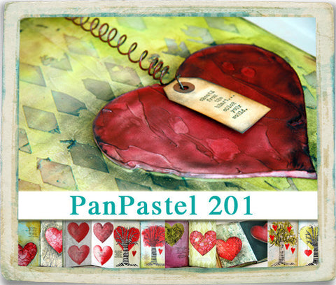 VIDEO WORKSHOP: PanPastel 201 - Donna Downey Studios Inc - 2