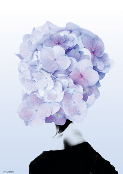 Hortensia #1 - By Martin Moore