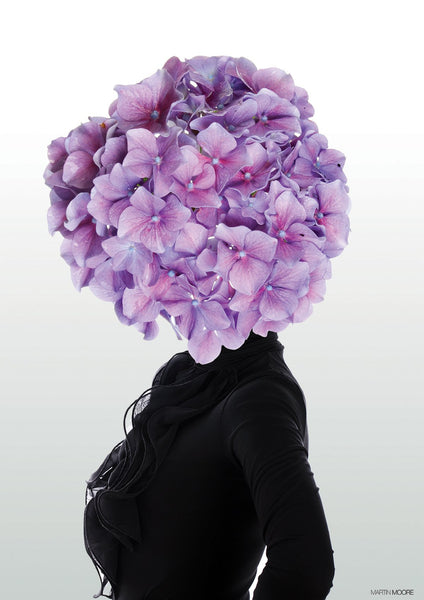 Hortensia #2 - By Martin Moore