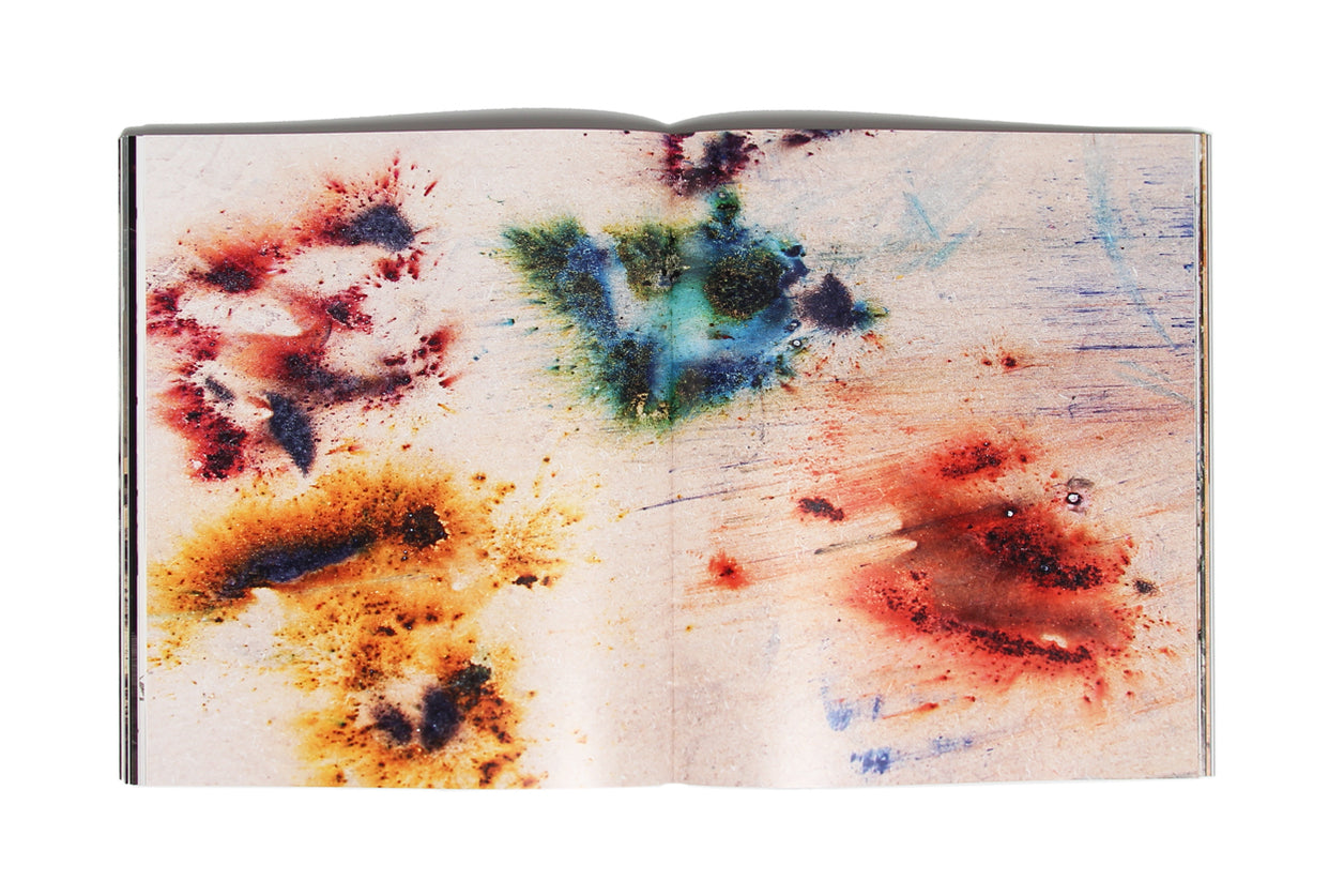 Cai Guo-Qiang: The Transient Landscape