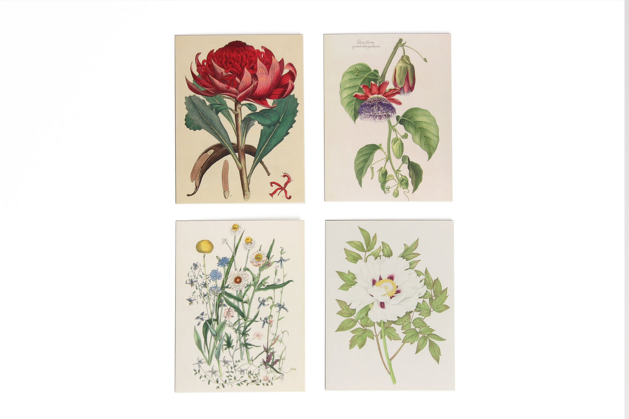Greeting Card Set Botanical Celebration