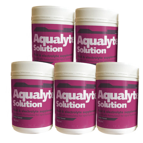 Aqualyte Berry 480g Tubs